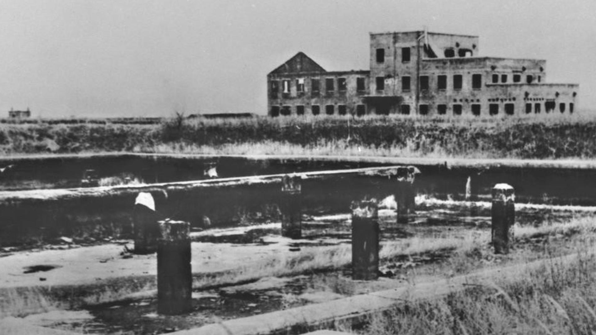 Tajna jednostka 731. Wstrząsające relacje żołnierzy